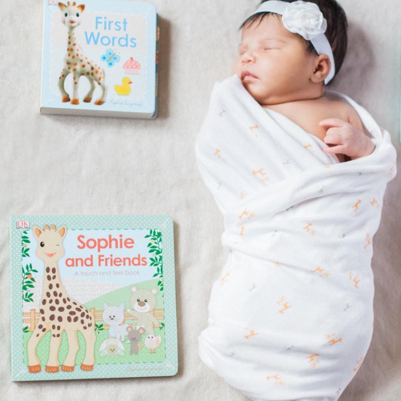 baby newborn photo session